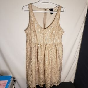 Torrid lace with shimmer overlay dress